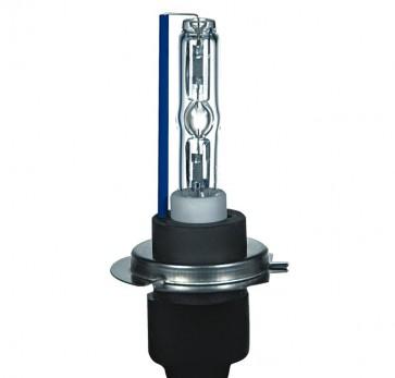 Xenon H7 Lamp