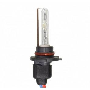 Xenon HB3 / 9005 Lamp