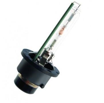 Xenon D4S Lamp